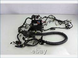 Faisceau Circuit Electrique HARLEY DAVIDSON 1690 FAT BOB 2013 2014 Piece Moto